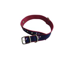 Dog Collar (Eliza B.)